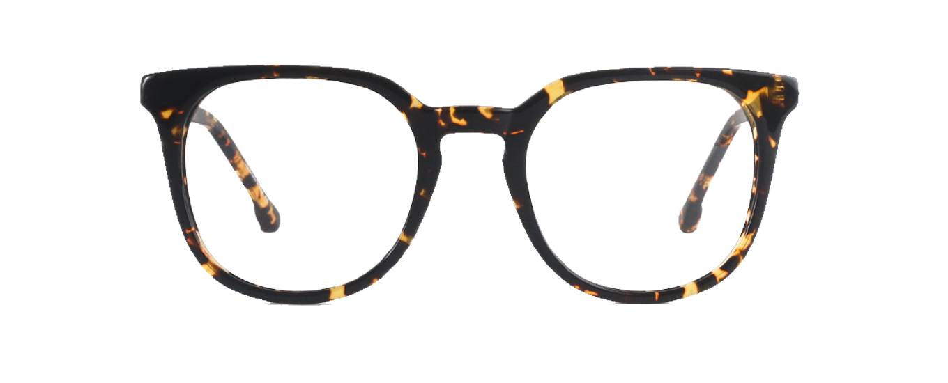 Shaw in Tribeca Tortoise  Eyeglasses